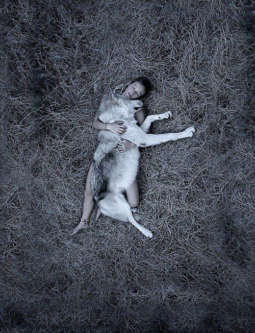 wolfhug